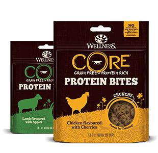 Wellness Core Protein bites